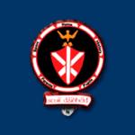 St. Davids Crest